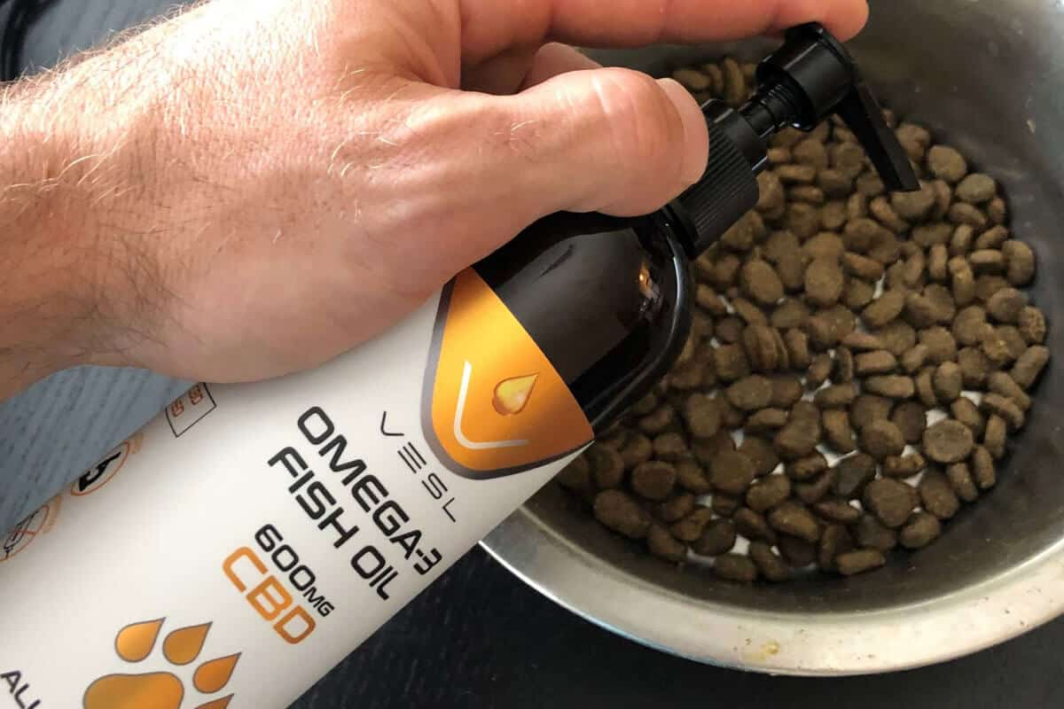 CBD supplement and dog food